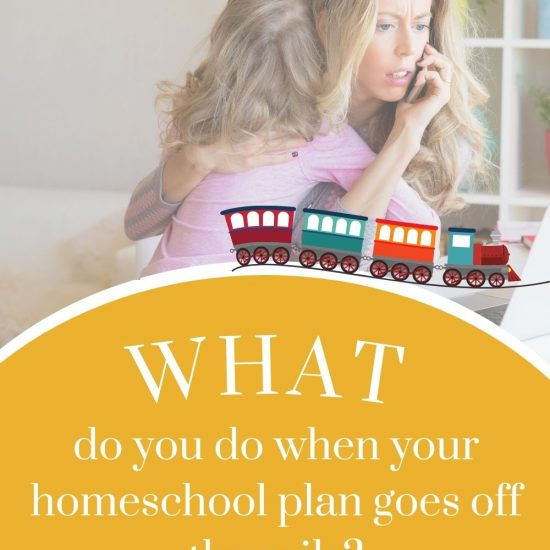 When Your Homeschool Schedule Isn't Going As Planned.