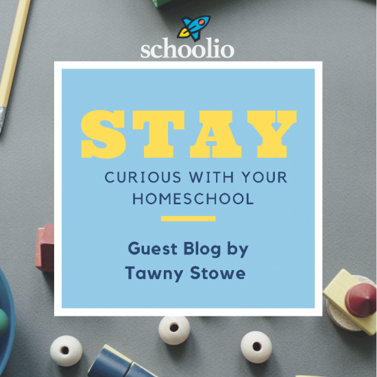 Stay Curious With Your Homeschool.